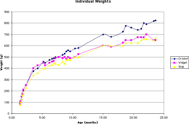 Weight Gain With Age Chart Keninamas